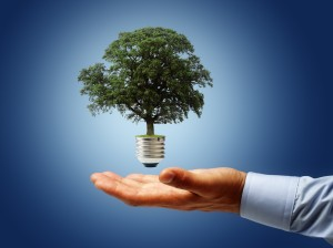 Sustainable business sense